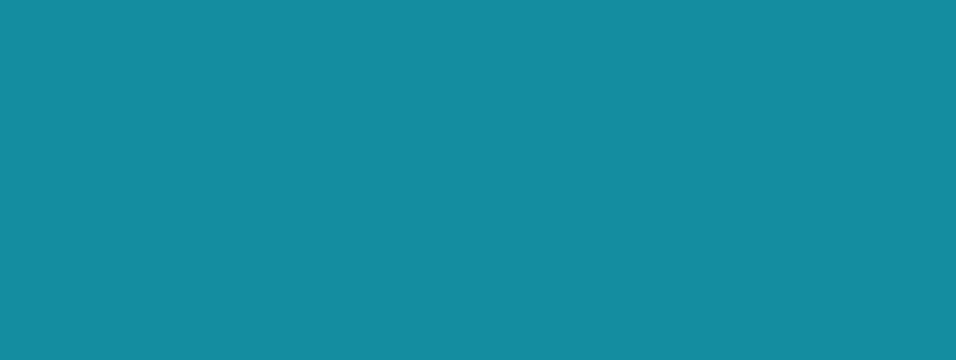 Mag.ª Christina Kraus